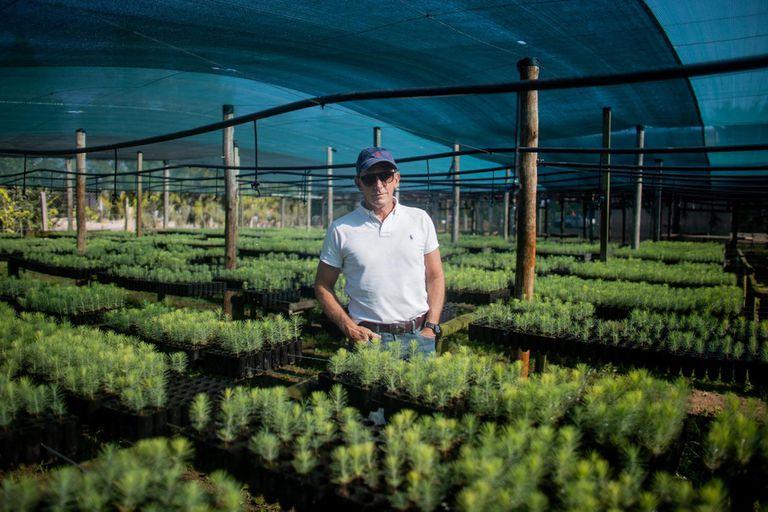 Jorge Kacef es ingeniero agrónomo y tiene a su cargo el vivero